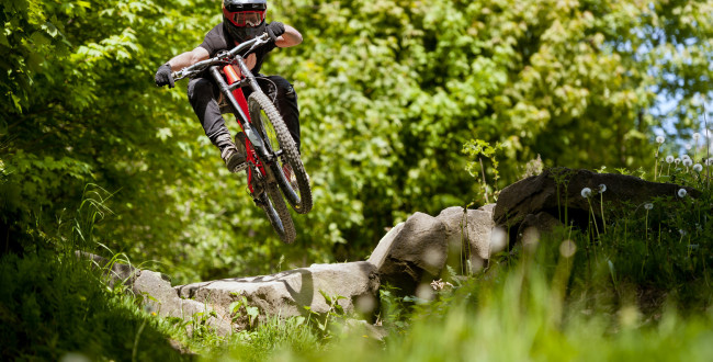 Mountainbiker rides in sunny forest