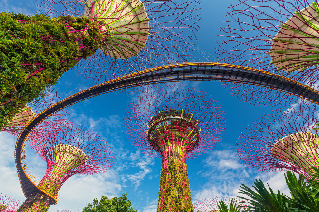 SINGAPORE-AUG 31: Day view of The Supertrees Grove at Gardens by the Bay on August 01, 2014 in Singapore. Spanning 101 hectares, and five-minute walk from Bayfront MRT Station